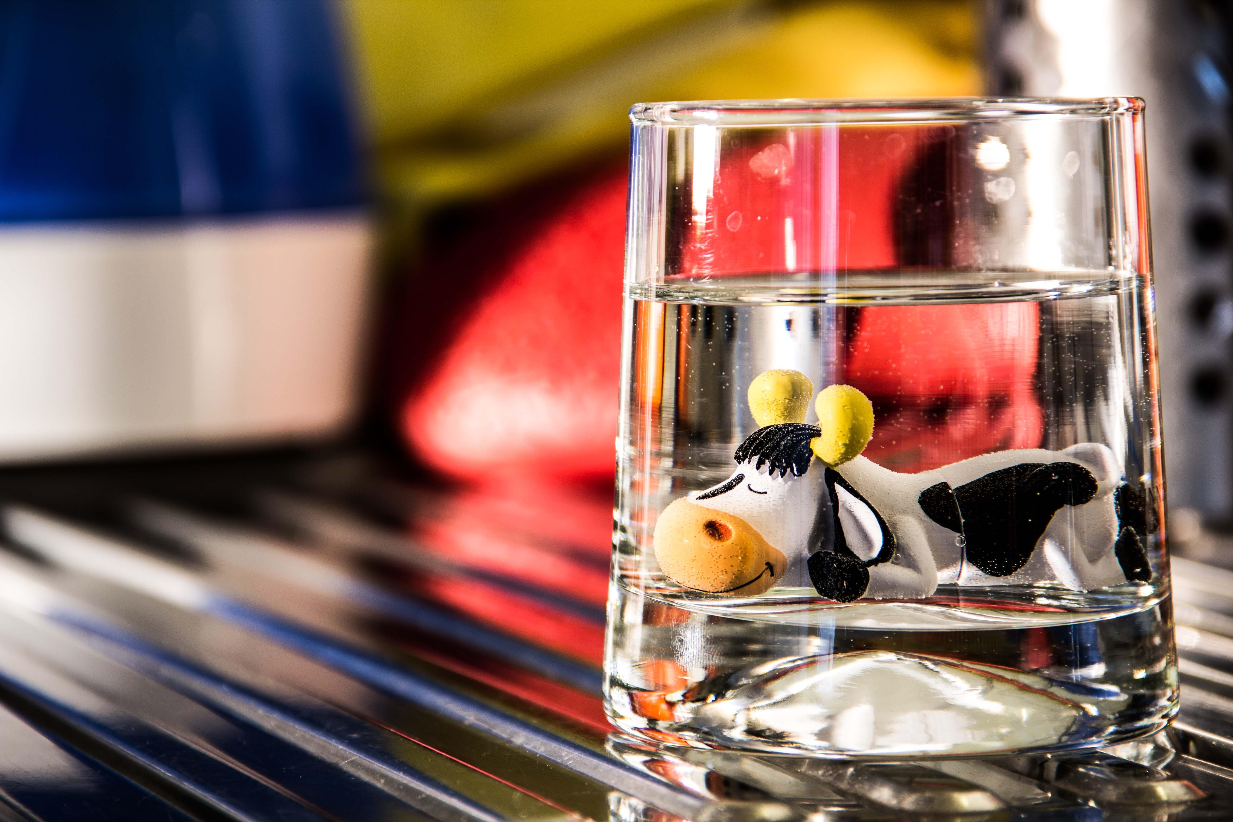 Après avoir regardé une émission sur la plongée en apnée, Hector a voulu tester combien de temps il pouvait tenir sous l'eau.  457 jours plus tard, rongé par l'ennui, Hector a abandonné.
