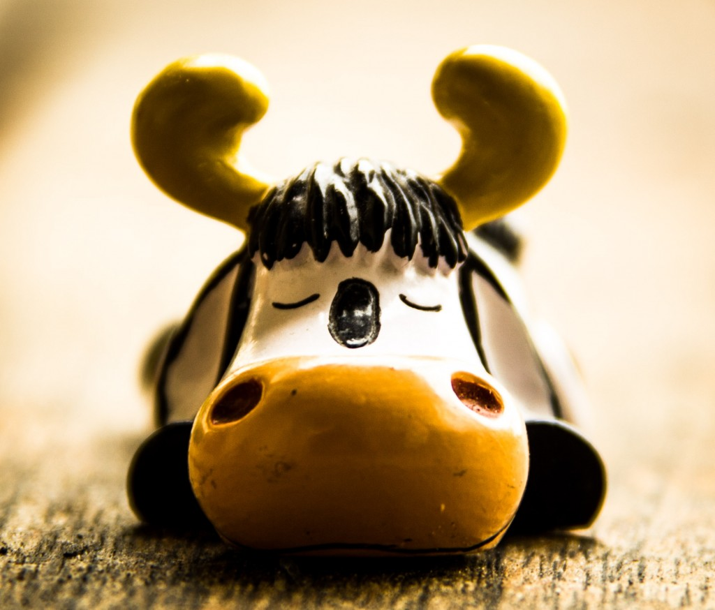 ljksdfajkfd proudly presents : Hector-The-Cow