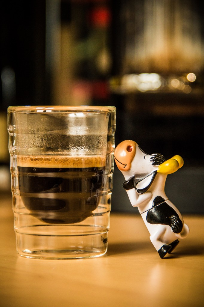 Hector-The-Cow, caféïnomane