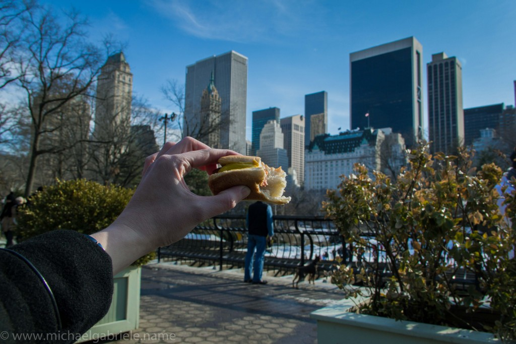 Hot dog New York